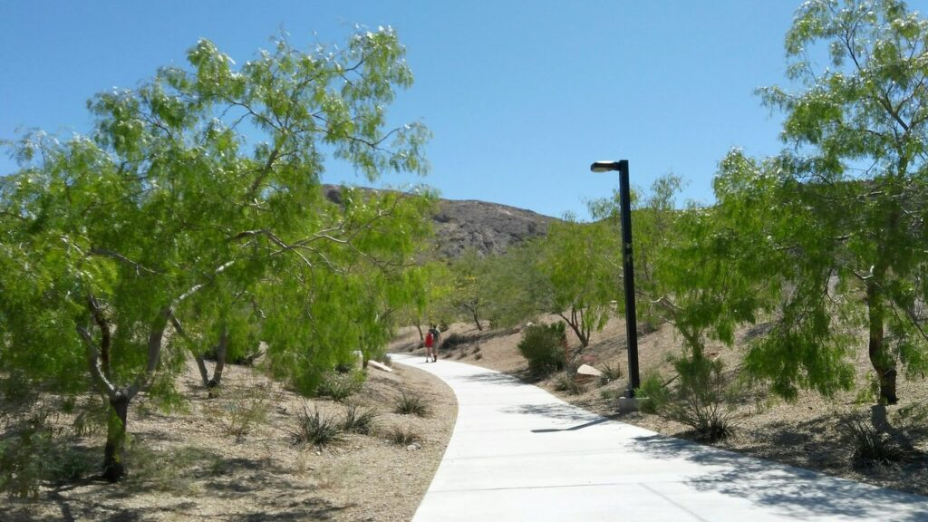 Lone Mountain Park