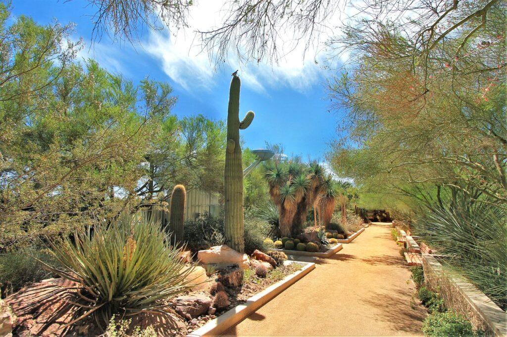Springs Reserve Vegas